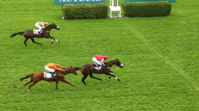 Prix The Fellow (prix Edmond Barrachin)