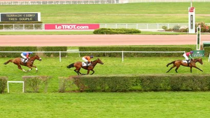 Steeple-Chase national des anglo arabes