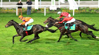 Grand National Des Anglo-Arabes a 12.5 %