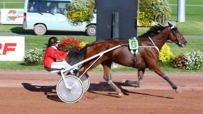 Prix Du Bar-Pmu Le Galop'In - Feurs